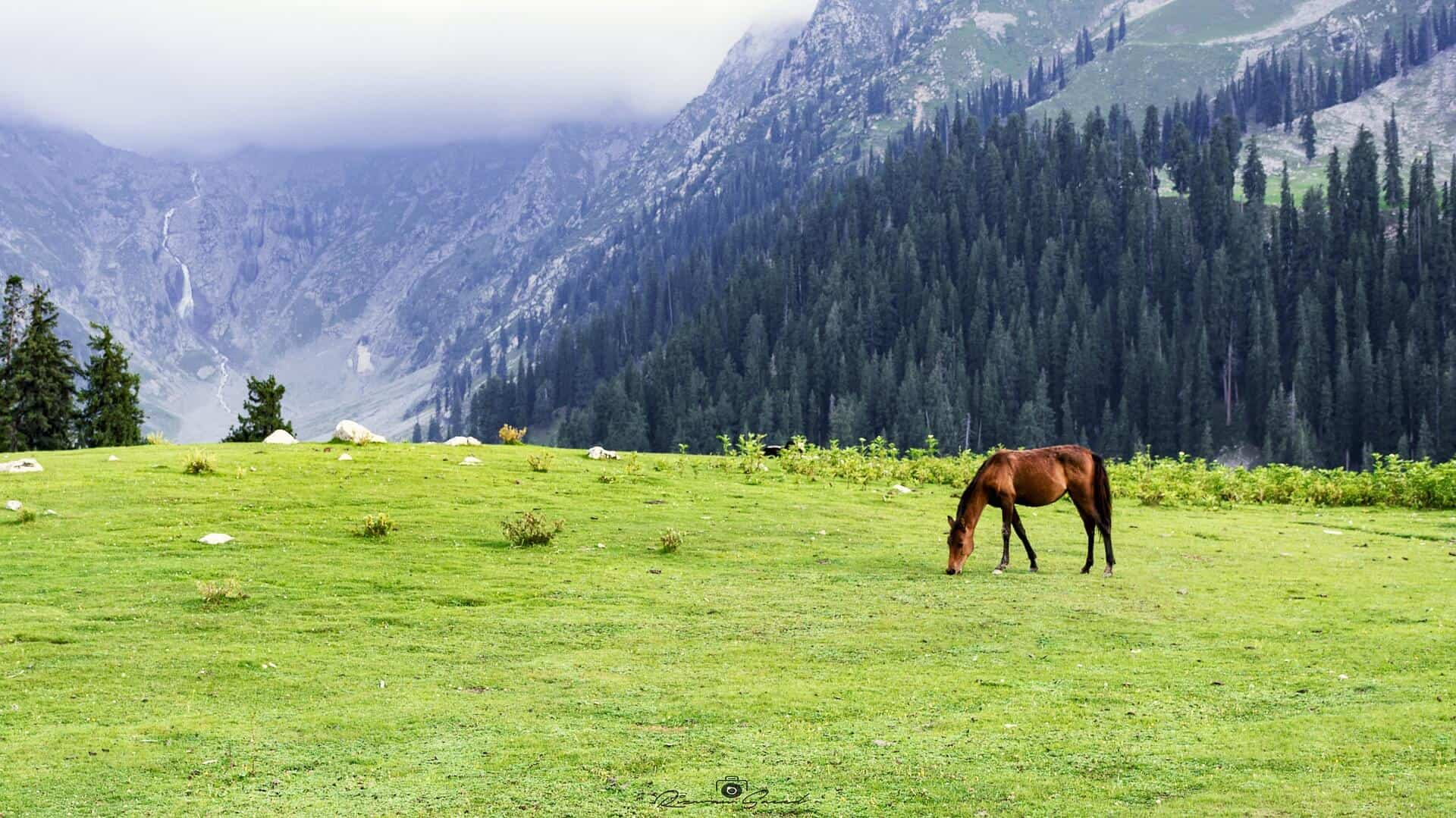 13D11N BEAUTY OF PAKISTAN-2