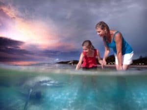7D5N Gold Coast _ Tangalooma Wild Dolphin Resort-hero