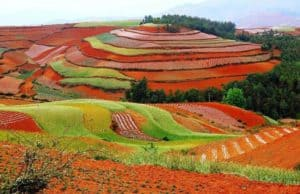 8D7N GUIZHOU _ DONGCHUAN RED LAND-hero